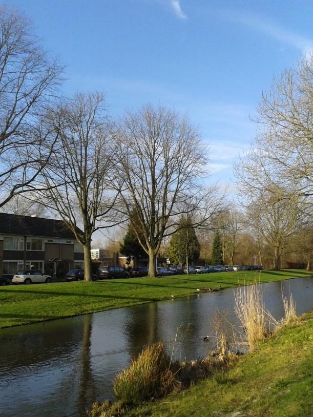Sinar matahari saat musim dingin di Belanda